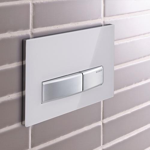 Flush Plate